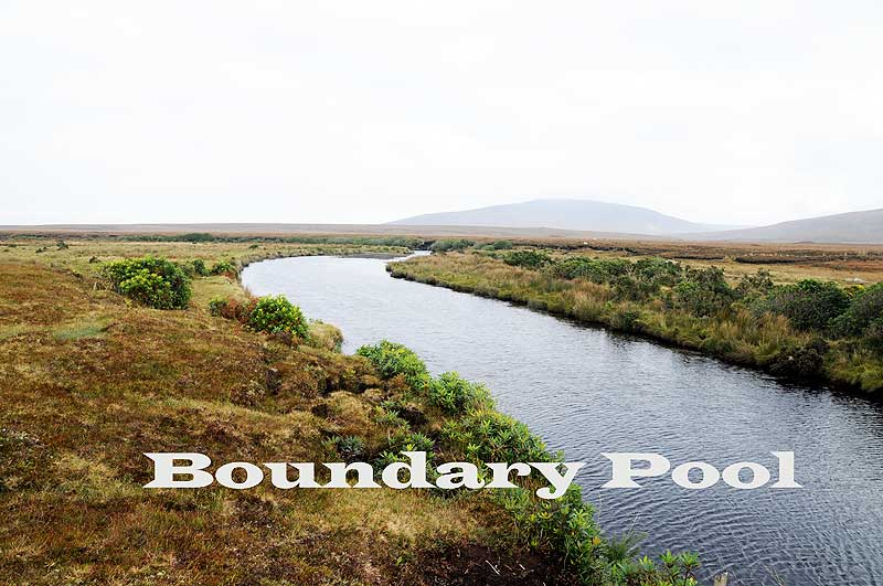 boundarypool.jpg